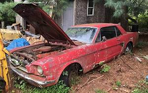 Save Them! Pair of 1966 Ford Mustangs