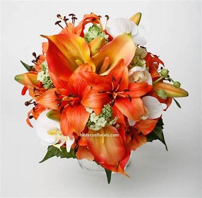 Tiger Lily Symbolism Lilies Bouquet Wikia Orange