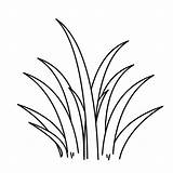 Grass Coloring Pages Drawing Plants Clipart Line Sheet Wild Tall Colouring Flower Colorluna Templates Clipartmag Printable Sheets Printables Visit Getdrawings sketch template