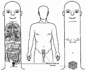 Как правильно наклеить урологический пластырь от простатита
