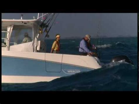 Boating License Boston by Boston Whaler 370 Outrage Fishing