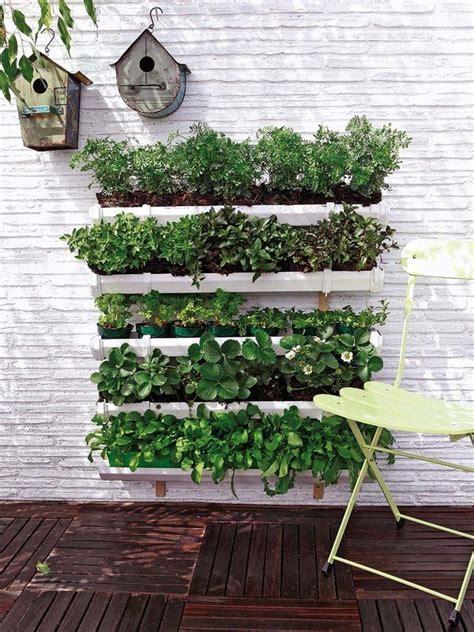 Gutter Vertical Garden by 44 Best Vertical Gardens Images On Gutter