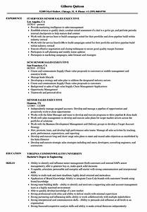Senior Sales Executive Resume Samples