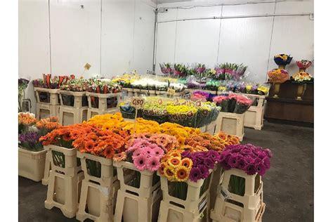 Ziedu bāze