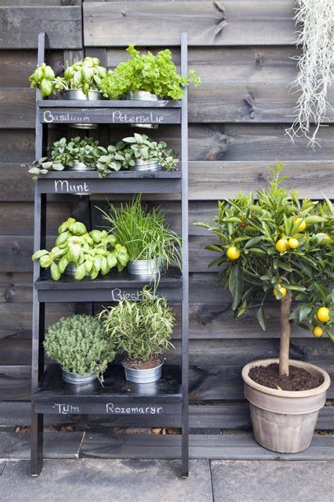 practical ideas creating functional balcony herb garden