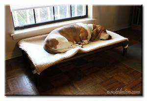 barking from the bayou With soundproof dog bed