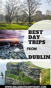 55 Day Trips On A Tank Of Gas