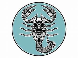 Sternzeichen Wer Passt Zu Jungfrau : welches sternzeichen passt zum skorpion skorpion partner wer passt zum sternzeichen skorpion ~ Indierocktalk.com Haus und Dekorationen