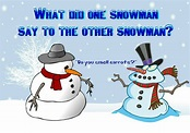 MAGNET DUMB JOKES What Did One Snowman Say to the Other ...