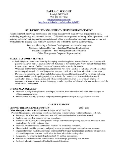 Professional Profile Resume Examples Resume Professional