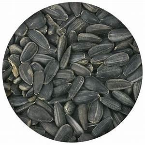 Graines De Tournesol Pour Oiseaux : graines de tournesol bio boutique lpo ~ Dailycaller-alerts.com Idées de Décoration