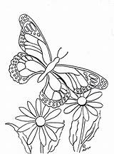 Butterfly Coloring Pages Printable Flower Copy Sheets Butterflies Flowers Coloringpagesbymradron Paintable Adult Drawings Printables Daisy Adron Mr sketch template