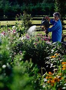 Cleaning Fish Yard Landscaping Ideas For Water Conservation Budgeting