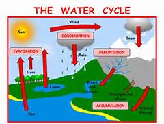 Accumulation In The Water Cycle Evaporation Definition
