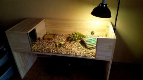terrarium tortue hermann