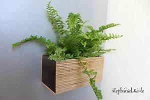 Cache Pot Magnétique : diy d co v g tale magnet vegetal faire soi m me un pot magn tique pour une plante 10 ~ Teatrodelosmanantiales.com Idées de Décoration