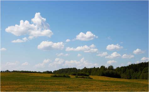 simple landscapes spring kevad landscape rural