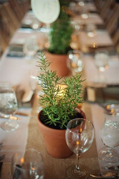 unique ways   potted plants   wedding page    puff