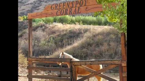 Greenspot Farms Country Pumpkin Patch Inland Empire - YouTube