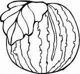 Watermelon Coloring Colorir Melancia Colorare Clipart Disegni Desenhos Anguria Printable Wydrukowania Arbuz Whole Watermelons Folha Desenho Frutta Piante Fruit Printables sketch template