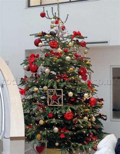 decorated perfect christmas tree  day delivery london uk