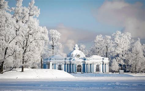snow in st petersburg palace in the woods wallpapers and images wallpapers pictures photos