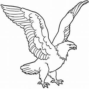 perch fish coloring page sketch coloring page With bald eagle diagram