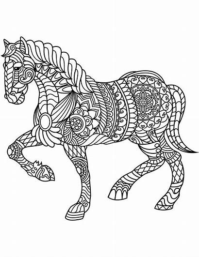 Coloring Horse Pages Adults Zentangle Printable Animal