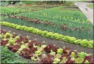 Dessiner Son Jardin : comment dessiner un jardin potager ~ Melissatoandfro.com Idées de Décoration