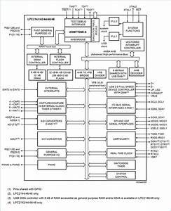 Functional Block Diagram Of Lpc2148 Arm7  U2013 Codembedded