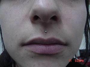 Lip Piercing - Body Piercing & Modification