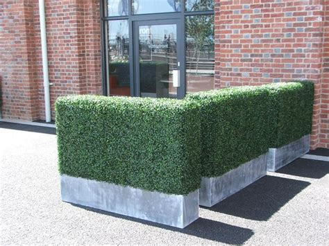 siepi da vaso per terrazzo tipologie siepi artificiali siepi siepi artificiali