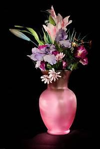 Pink Vase · Free Stock Photo