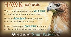 Image Gallery hawk symbol