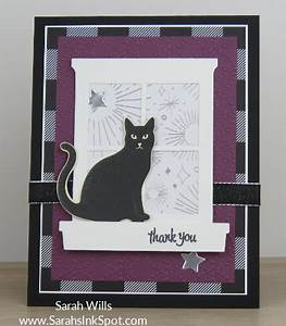 Starry eyed Cat sitting in the Window… – Sarahs Ink Spot