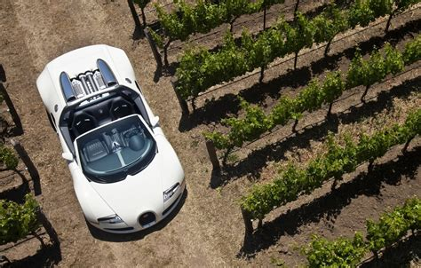 Of course, this doesn't meant that configurations for the molsheim machine lack importance. Wallpaper auto, white, grapes, veyron, sport, bugatti, convertible, grand, roadster images for ...