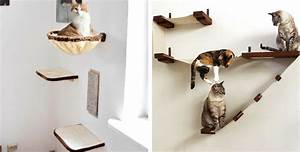 Arbre À Chat Mural : arbre chat comment choisir le meilleur pour mon animal ~ Melissatoandfro.com Idées de Décoration