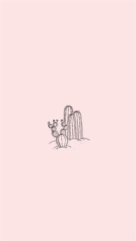 prickly cactus minimalist classy tumblr wallpaper