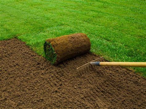 prezzo tappeto erboso prato a rotoli