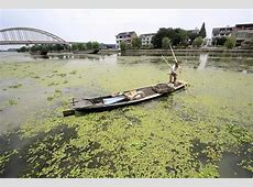 Who Needs Science? China Province Orders Water Pollution