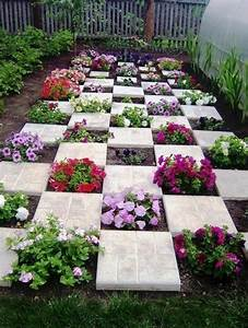 11 easy and cheap colorful container garden ideas
