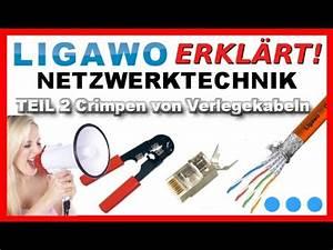 Lan Kabel Belegung : ligawo erkl rt crimpen von verlegekabeln mit unseren neuen ~ A.2002-acura-tl-radio.info Haus und Dekorationen