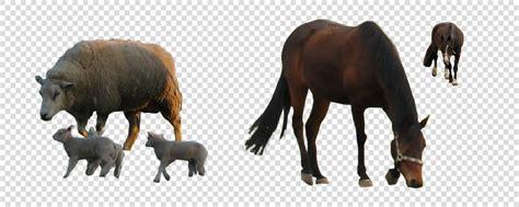 afbeelding bloemen met dier transparantie afbeelding