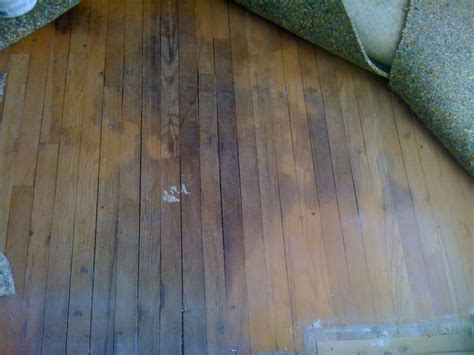 Fixing Hardwood Floors Water Damage by Dealing With Flood Damage To Your Floors