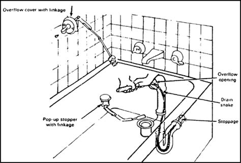 bathtub drain trap diagram bathtub drain trap diagram