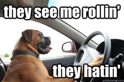 They See Me Rollin They Hatin Meme - they see me rollin they hatin meme 100 images they see me rollin funny pictures quotes memes