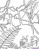 Jungle Coloring Pages sketch template
