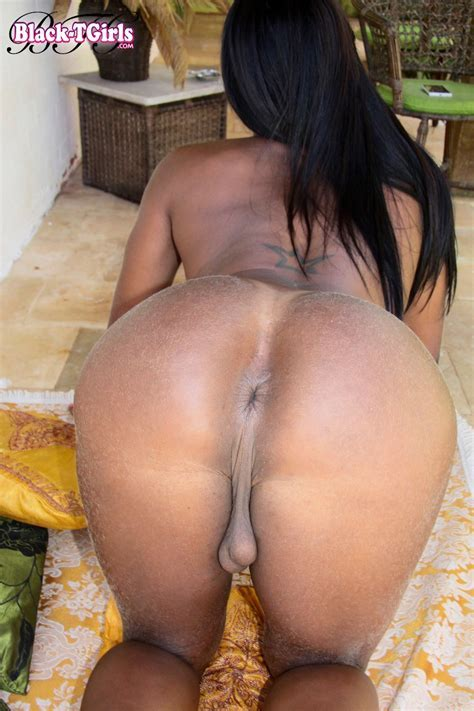 Black Tgirls Veronica Is A Horny Brazilian Girl With Huge Sexy Tits And A At Jilol Com