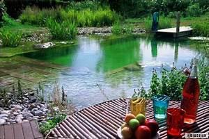 piscine naturelle une piscine ecolo zero entretien With cout d une piscine naturelle