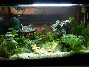 Deco Aquarium Zen : d co aquarium jardin japonais ~ Melissatoandfro.com Idées de Décoration